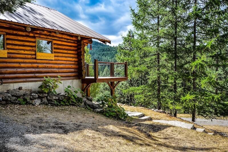 Rodzaje drewna na domy z bali